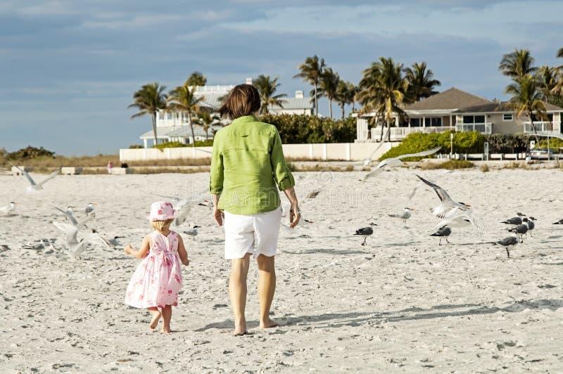 Férias da praia da família fotos de stock