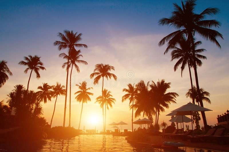 Férias de verão, fundo tropical da praia do paraíso imagens de stock royalty free