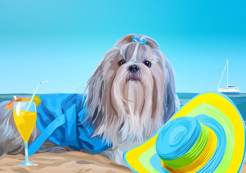 Férias do cão do tzu de Shih ilustração royalty free