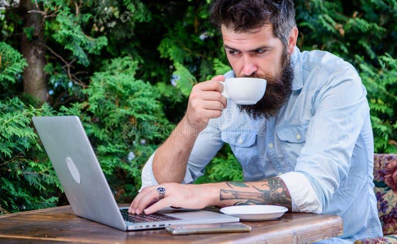 Férias do planeamento Apartamento do livro em linha O moderno farpado do homem senta-se fora com Internet e beber surfando do por fotos de stock