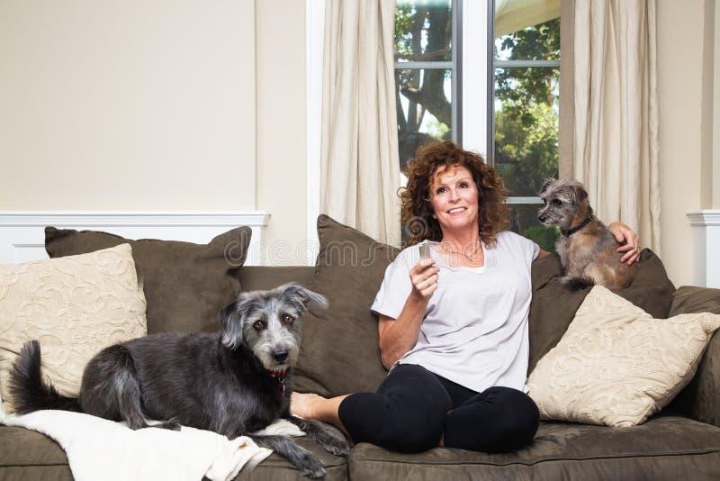 Fêmea adulta que olha a tevê com os cães no sofá imagem de stock royalty free