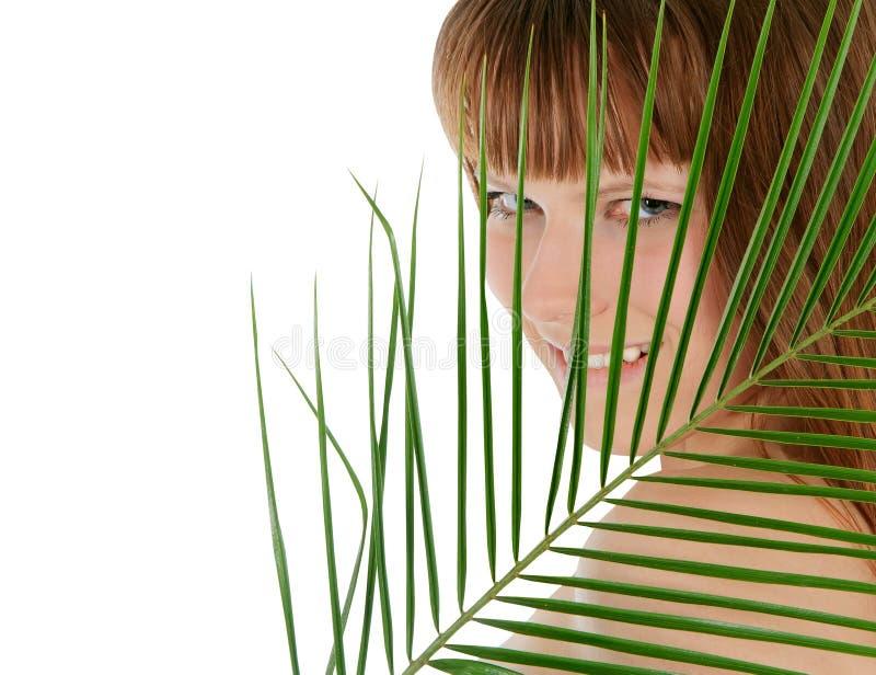 fêmea atrás da folha de palmeira sobre o branco imagem de stock