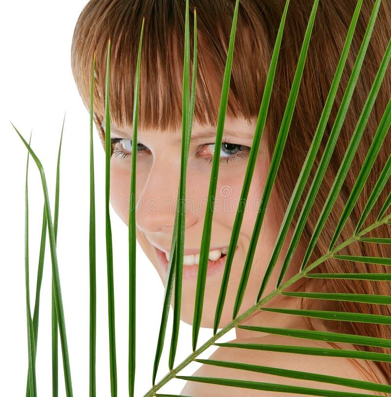 fêmea atrás da folha de palmeira sobre o branco fotografia de stock royalty free