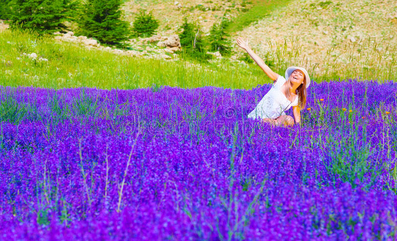 Fêmea bonito no campo da alfazema foto de stock royalty free