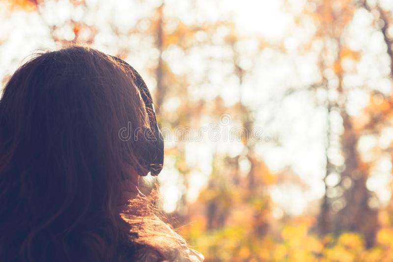 A fêmea com fones de ouvido que anda no parque escuta sons ou música do conceito da floresta do outono Ver?o indiano imagem de stock royalty free