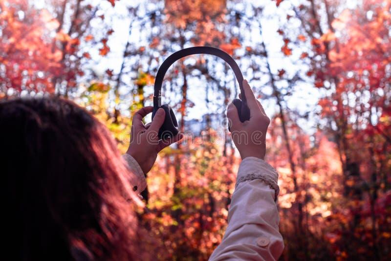 A fêmea com fones de ouvido que anda no parque escuta sons ou música do conceito da floresta do outono Ver?o indiano imagens de stock