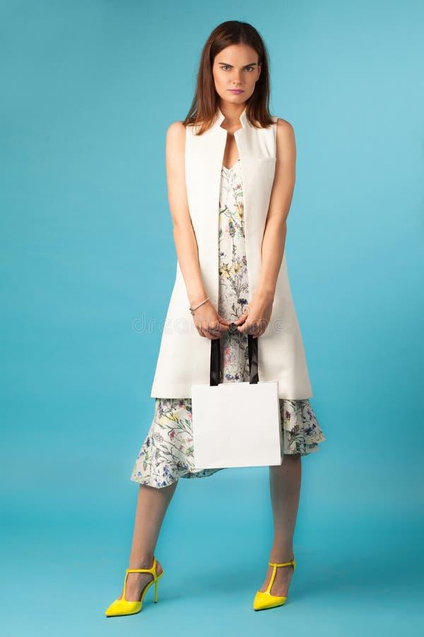 Fêmea da elegância com saco de compras foto de stock