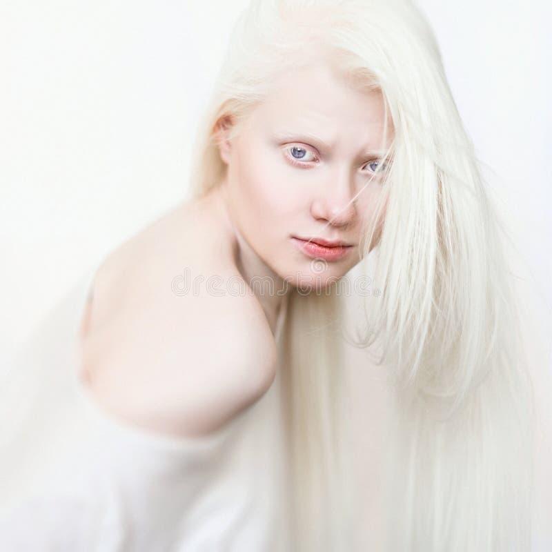 Fêmea do albino com cabelo puro branco do pele e o branco Cara da foto em um fundo claro Retrato da cabeça Menina loura imagens de stock