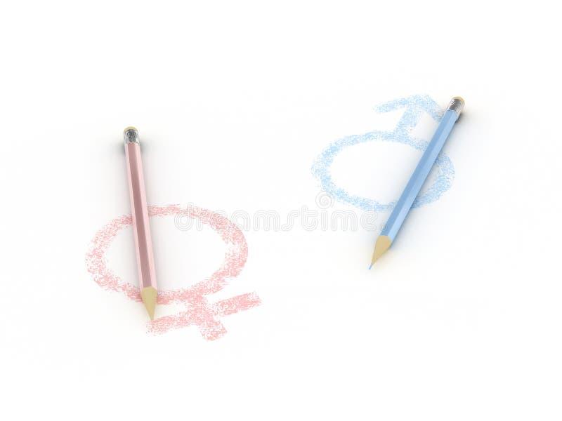Fêmea e macho dos sinais com lápis ilustração do vetor
