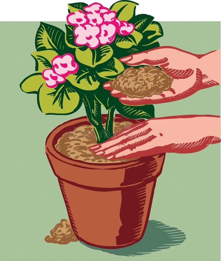 A fêmea entrega a invasano uma planta de florescência bonita ilustração stock