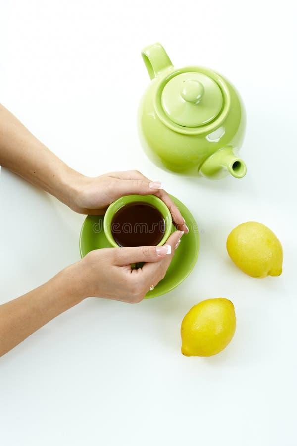 A fêmea entrega o copo de chá da terra arrendada imagens de stock royalty free