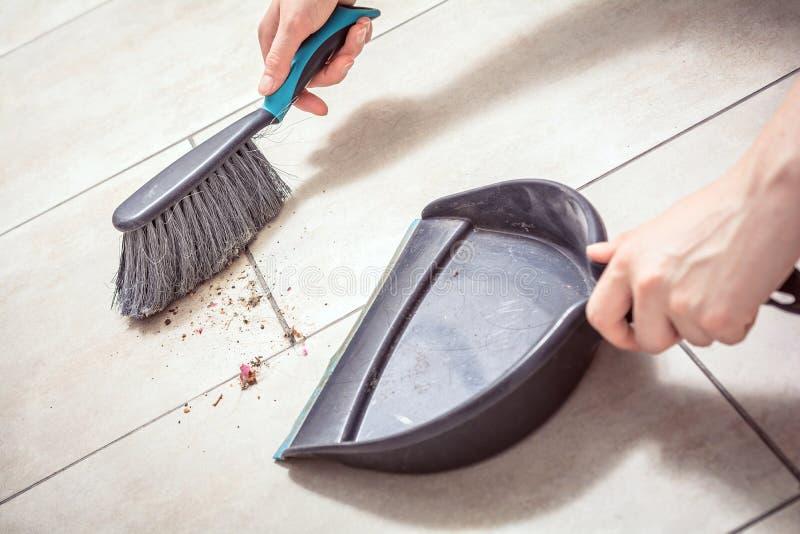 A fêmea entrega poeira arrebatadora com uma vassoura em um pá-de-lixo, conceito das tarefas domésticas imagem de stock royalty free