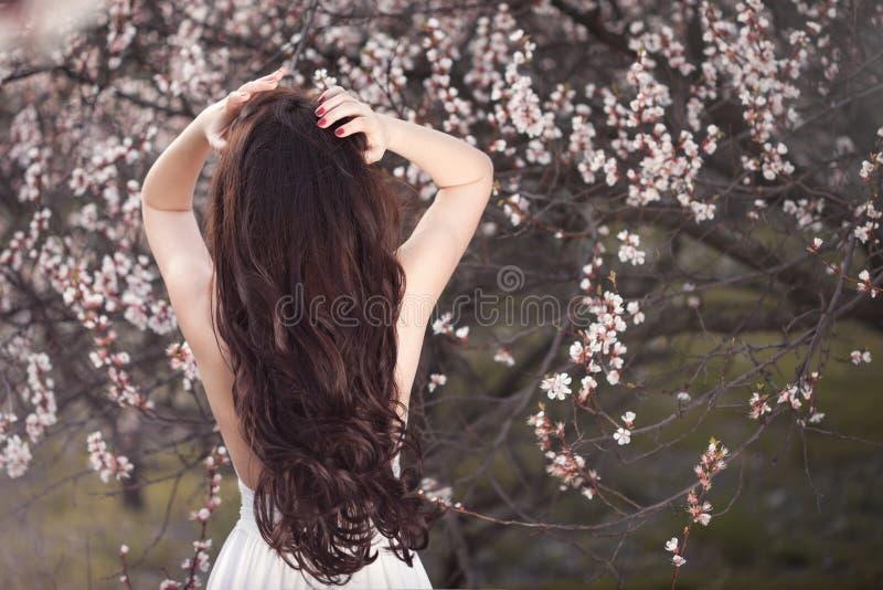 Fêmea graciosa no vestido branco que está com ela para trás sob árvores de florescência no jardim da mola imagem de stock