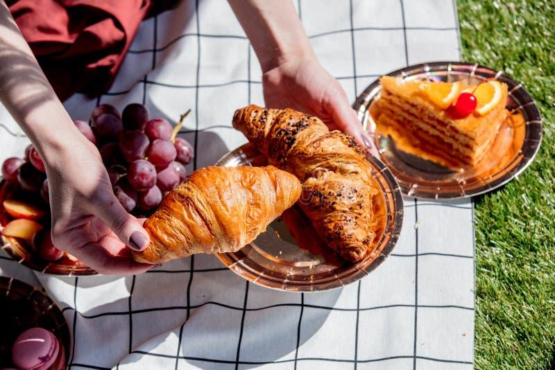 F?mea guardando uma placa com os croissant sobre o bolo e a maca verificada na grama verde fotos de stock royalty free