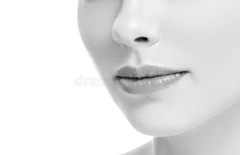 Fêmea natural cor-de-rosa bonita dos bordos da mulher do sorriso da boca dos bordos isolada em monocromático branco imagens de stock