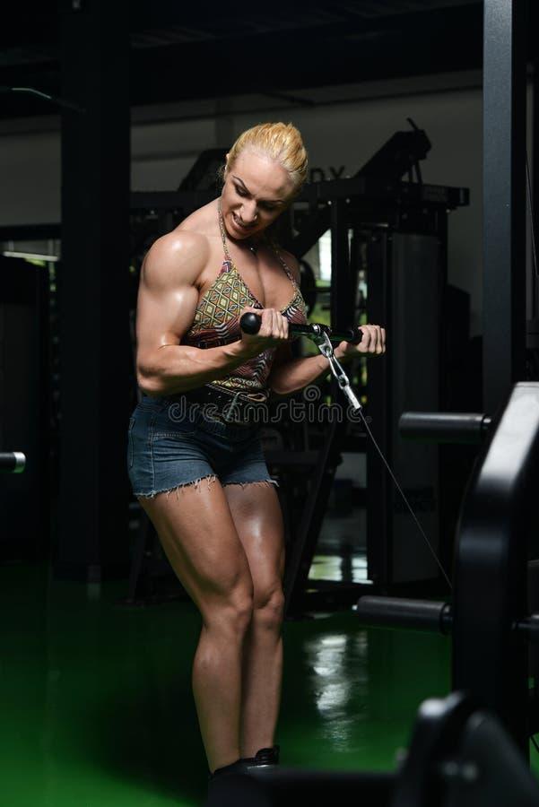 Fêmea nova que faz exercícios do bíceps no Gym fotografia de stock royalty free