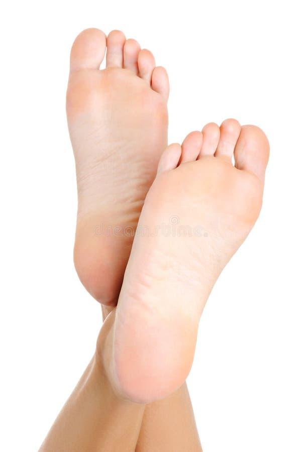 fêmea well-groomed um o pé imagens de stock
