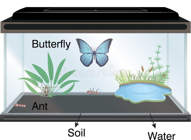 Física - aquário e borboleta ilustração stock
