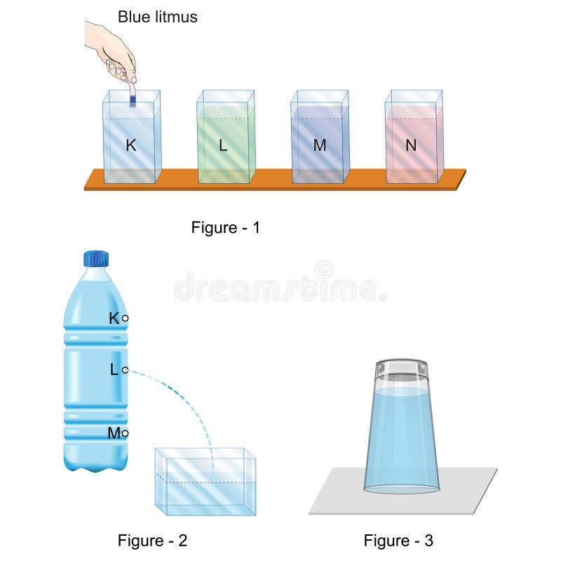Física e biologia - versão 1 do molde da pergunta e resposta - ilustração royalty free