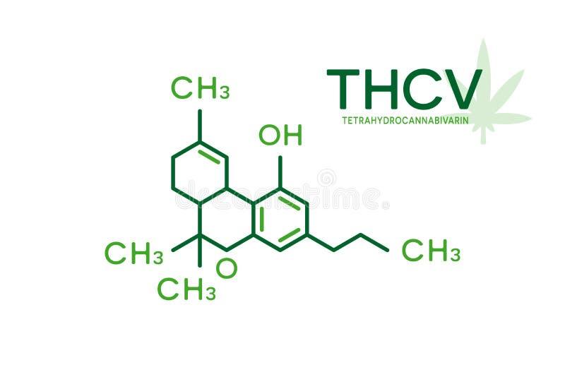 Fórmula molecular de THCV Estructura de la molécula de Tetrahydrocannabivarin en el fondo blanco ilustración del vector
