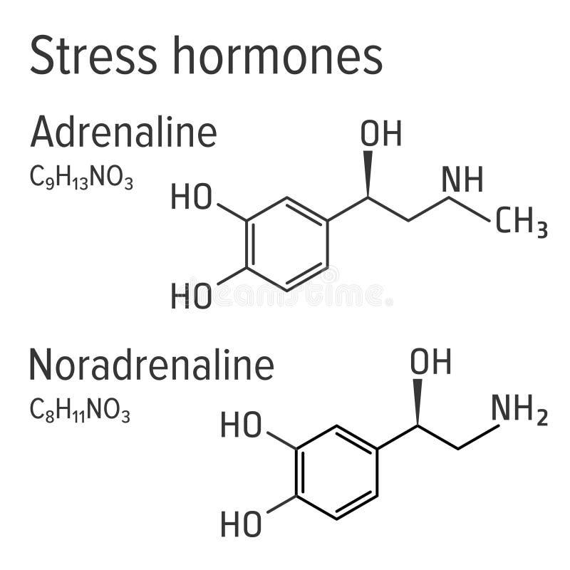 Fórmulas químicas do vetor dos harmones do esforço da adrenalina e do noradrenaline ilustração stock