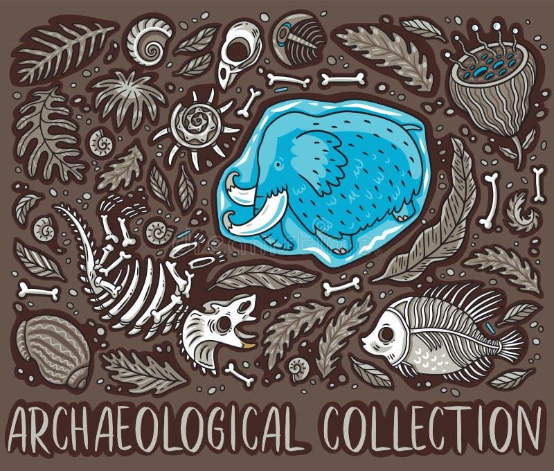 Fósseis, ossos, folhas antigas e skeletones ajustados Ilustração do vetor ilustração royalty free
