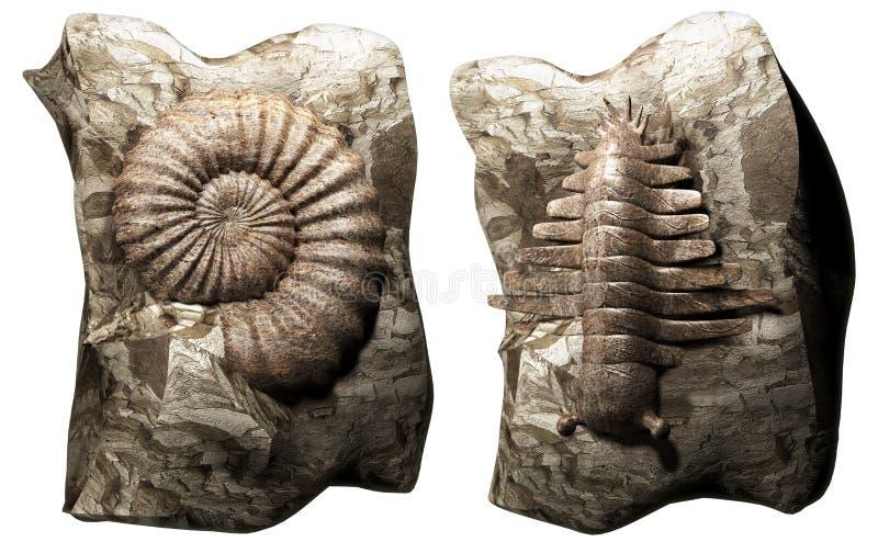 Fóssil ilustração stock