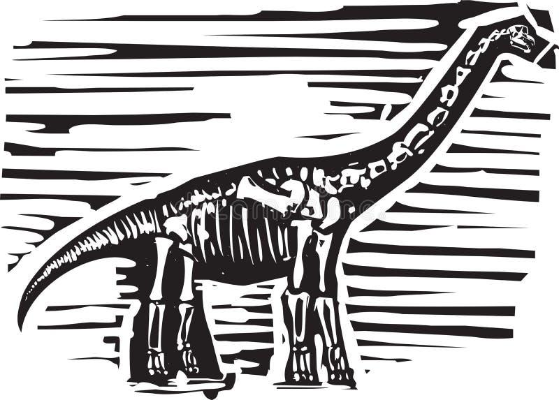 Fóssil do Apatosaurus ilustração stock