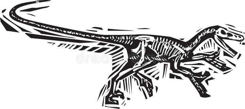 Fóssil running do Velociraptor ilustração do vetor