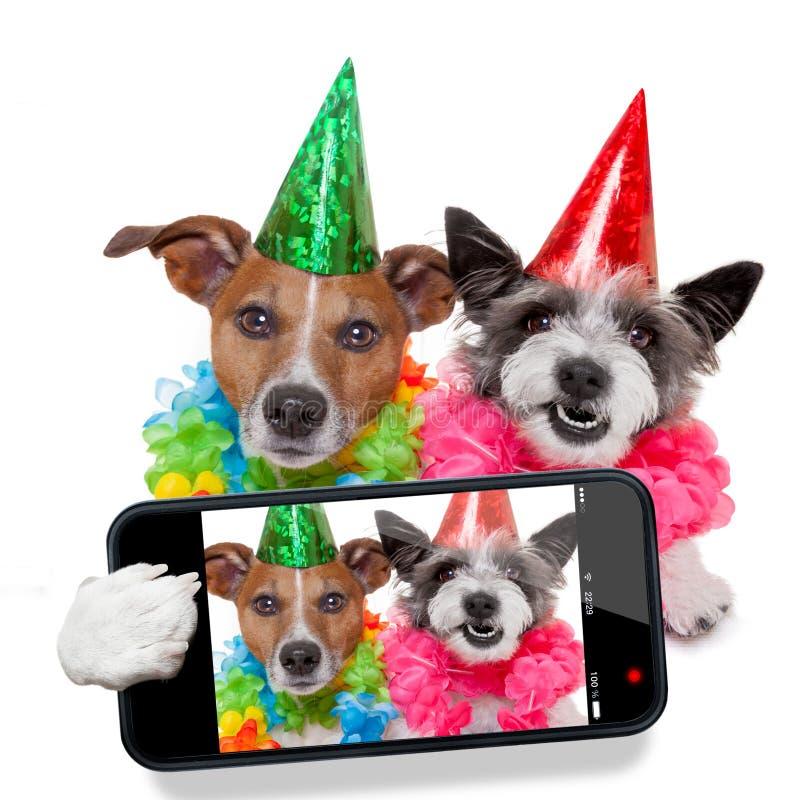 Födelsedaghundkapplöpningselfie royaltyfria bilder