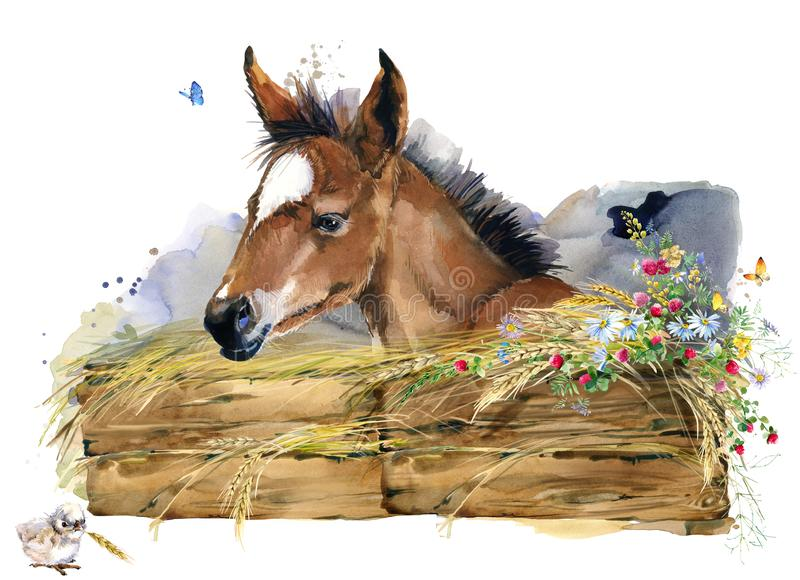 Fölillustration djur samling för vattenfärglantgårdar royaltyfri illustrationer