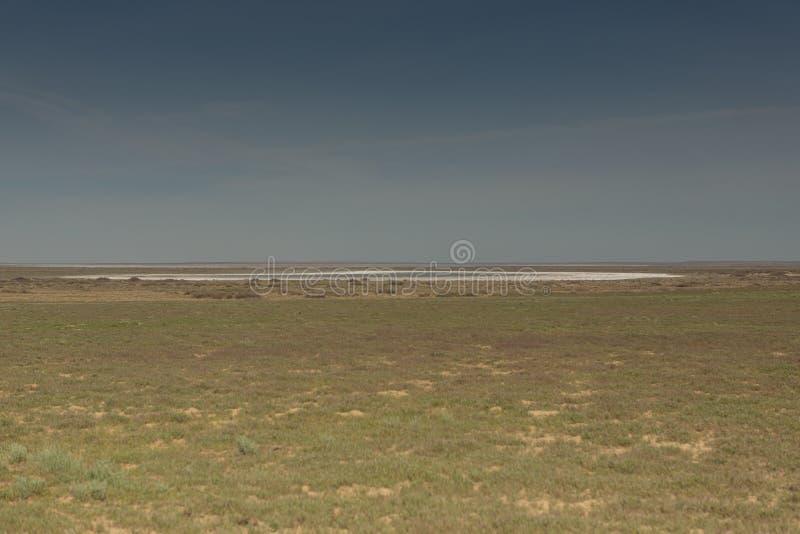 Följder av den Aral havskatastrofen Stäpp och sand på platsen av den tidigare botten av det Aral havet kazakhstan fotografering för bildbyråer