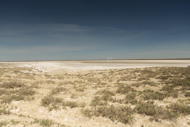 Följder av den Aral havskatastrofen Stäpp och sand på platsen av den tidigare botten av det Aral havet kazakhstan arkivfoton