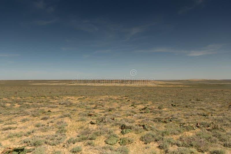 Följder av den Aral havskatastrofen Stäpp och sand på platsen av den tidigare botten av det Aral havet kazakhstan arkivfoto