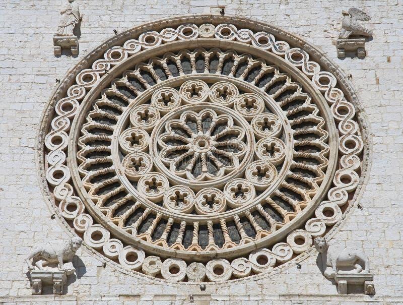 fönster för assisibasilicafrancesco rose st royaltyfri bild