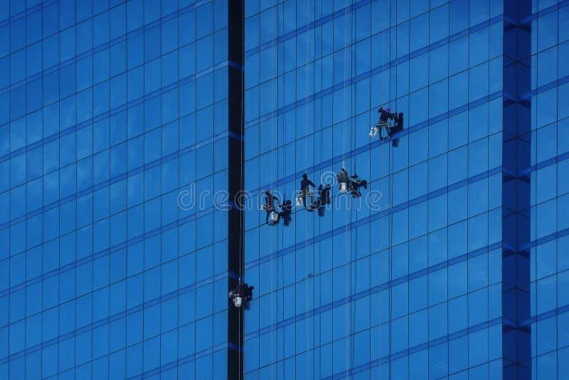 Fönster för washes för fönsterrengöringsmedel på en skyskrapa står högt farligt arkivfoto