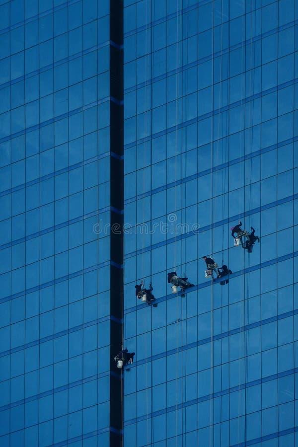 Fönster för washes för fönsterrengöringsmedel på en skyskrapa står högt farligt royaltyfri fotografi