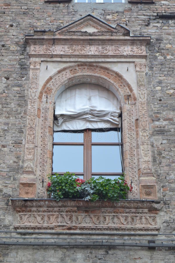 Fönster i Parma fotografering för bildbyråer