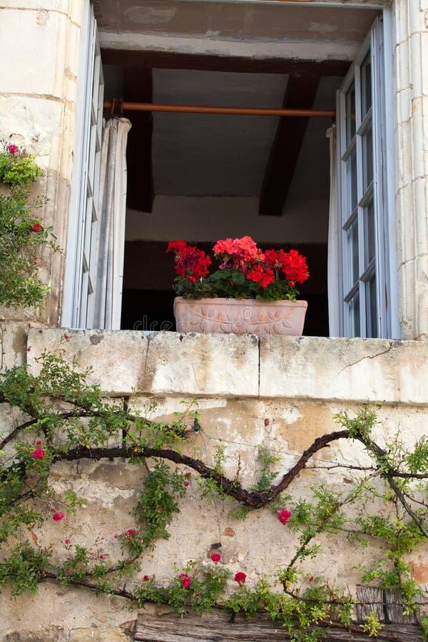 Fönster med blommor royaltyfria bilder