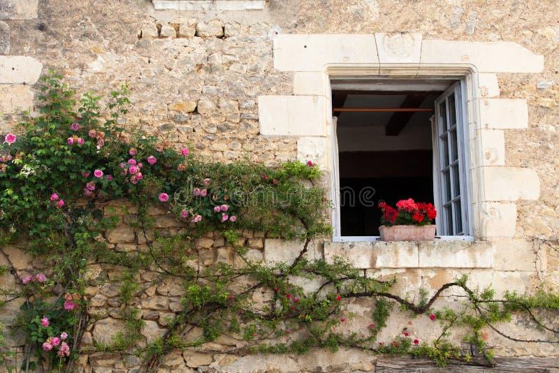 Fönster med blommor fotografering för bildbyråer