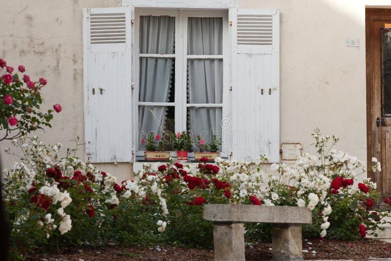 Fönster med blommor av pelargon och rosor royaltyfria foton