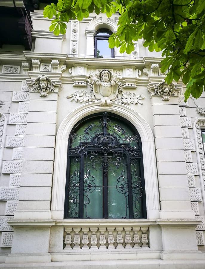 Fönster med falskt dekorativt raster royaltyfri fotografi