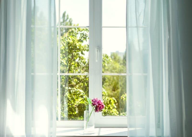 Fönster med gardiner och blommor royaltyfria foton