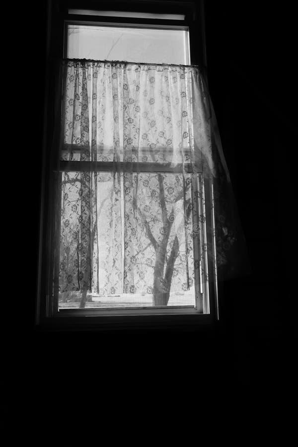 Fönster med ljus bris som blåser till och med den arkivfoton