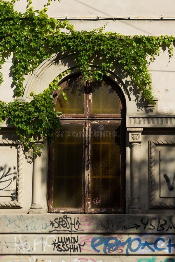 Fönster med stålstänger och mörkt exponeringsglas från en klassisk franska-typ byggnad i en solig dag som omges av den gröna murg arkivfoto