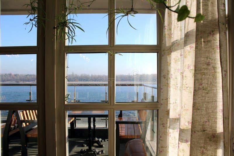 Fönster och vit gardin royaltyfri foto