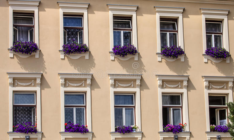 Fönster som dekoreras med det gamla patricianhuset för blommor, Jihlava, Tjeckien fotografering för bildbyråer
