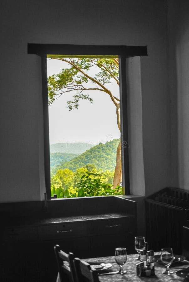 Fönster till Las terrazas, Kuba arkivbilder