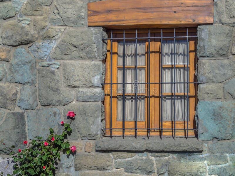 Fönsterblommor royaltyfri bild