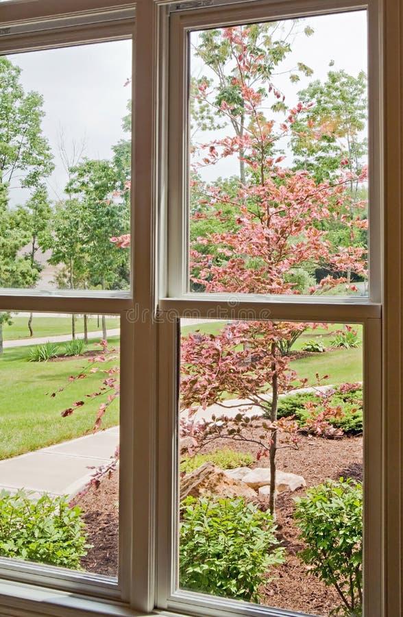 fönstergård för främre sikt royaltyfri bild